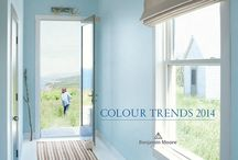 Colour / by Niche for design