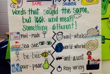 Teaching- Homophones
