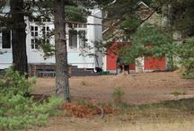 Villa Kala-Kalle / Renovation ideas for the coastal garden of a summer residence in Hanko, Finland. Victorian in style, bohemian in mood.