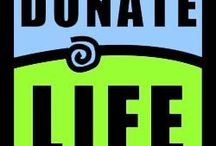 Donate Life / by Holly Stein Kluver