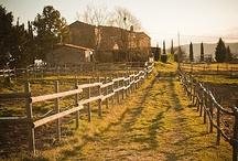Passeggiate a Cavallo / http://www.eatcookandlove.com/it/le-altre-attivita/lezioni-di-cavallo.html