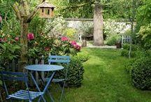 jardin...gazon...plantes...