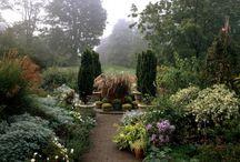 Gorgeous Gardens / by Christina Waggoner