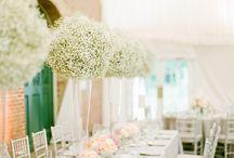 Centros de mesa / centros de mesa -  bodas