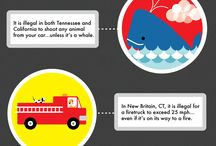 Did You Know... / Interesting infographics and information about cars and the automotive industry / by Force Marketing