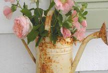 Kukat ja koristeet