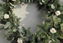 wieniec eukaliptus