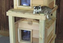 Cat houses n cats