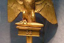 Aquila napoleonica