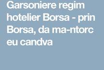 Garsoniere regim hotelier Borsa