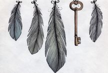Feathers / public / by Dawn D