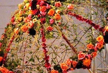 Vazba kvetin