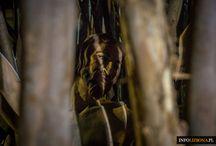Muzeum Kombatantów w Lizbonie / Belem poza utartym szlakiem turystycznym: Zwiedzanie Muzeum Kombatantów (Museu do Combatente - Liga dos Combatentes) w Lizbonie, w dzielnicy Belem.   Dowiedz się i zobacz więcej: http://infolizbona.pl/muzeum-kombatantow-w-lizbonie-zwiedzanie-belem/