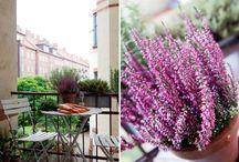 Garden/Сад