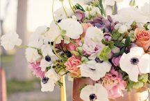 anemone table