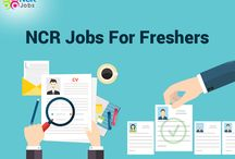 ncr jobs for freshers