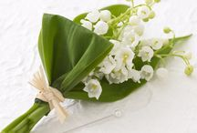 Lilly Of The Valley Wedding / Lilly of the valley wedding theme, inspiration, cakes, bouquets, wedding decoration