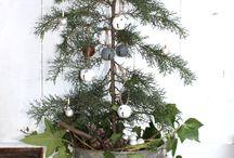 Christmas decoration ideas / by Amber Thornbury