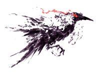 1 Crows Raven