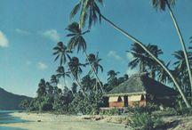 tropical travel  / by Savannah Benz