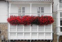 Balcones con flores