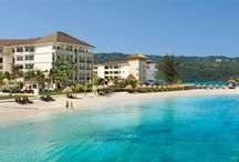 Our MBJ Airport Transfers to Secrets Wild Orchid Montego Bay