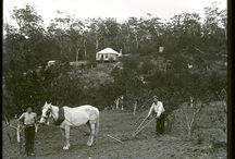 NSW Early Days