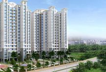 Dua Properties / Dua Properties is among the leading Real Estate Agents & Property Consultants in India who deal with properties located in Gurgaon, Faridabad.