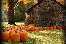 autumn scenes podzim