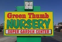 Nurseries, San Marcos, CA