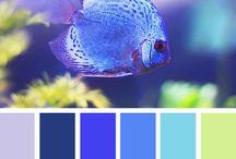 Obra y color
