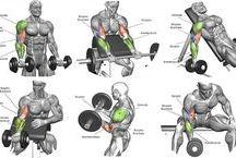 bicepsz