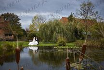 Weddings / #wedding #pictures #photos #photography #photographers #essex #colchester #weddings #venues