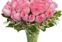 Flowers Delivery Online In Abu Road