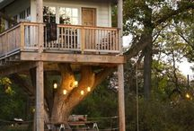 i want a tree house. / by Alisa Davis