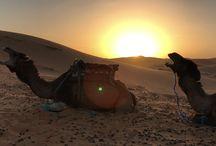 Marruecos( Sáhara )