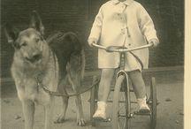 Fotos  antiguas con perros