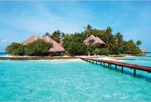 Maldives / With luxuriously warm seas, swaying palm trees and crystal white sands, the Maldives is the picture-perfect holiday. The high visibility water allows you to see marine wildlife from up to five metres away, making it the ideal destination