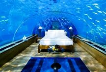 poseidon undersea resort fiji / Poseidon Undersea Resort, which is located in Fiji, situated on a private island and is buried 12 meters under the sea level.