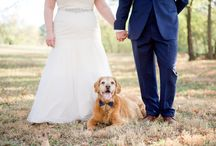 Ask the Wedding Experts