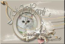 (N)Horvli`S / Kattene og hunden min