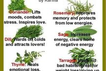 magic herbs