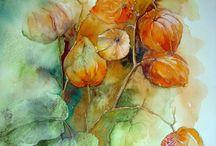Yvonne Harry watercolours