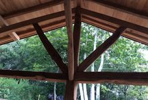 Regalos de la naturaleza / Las plantas nos proporcionan: belleza, medicamentos, aire limpio,  madera para construir muebles, casas,.....