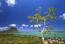 Mauritius / Villa La Gaulette 109 www.villamauritius.eu  fot. Daniel Pach