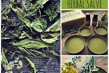 Herbs & spices. / Uses from healing to cooking.