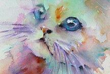 Aquarel kat