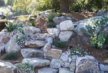 giardino da salvare