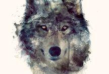 Idée tatouage loup