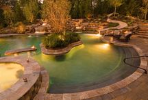 Backyard Pools,Ponds & Water Features / My love for pools & the water / by Walt Hoggle